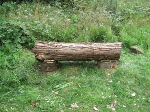 Rest your backside on this fine bench made from coppiced logs